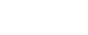 Logo DEHO SYSTEMS blanc footer